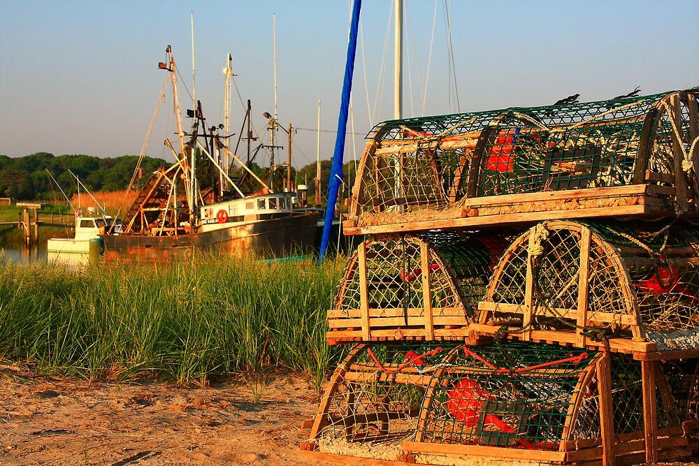 Lobster Traps by Artist Dapixara