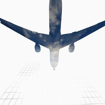Plane overhead by WeatherWax