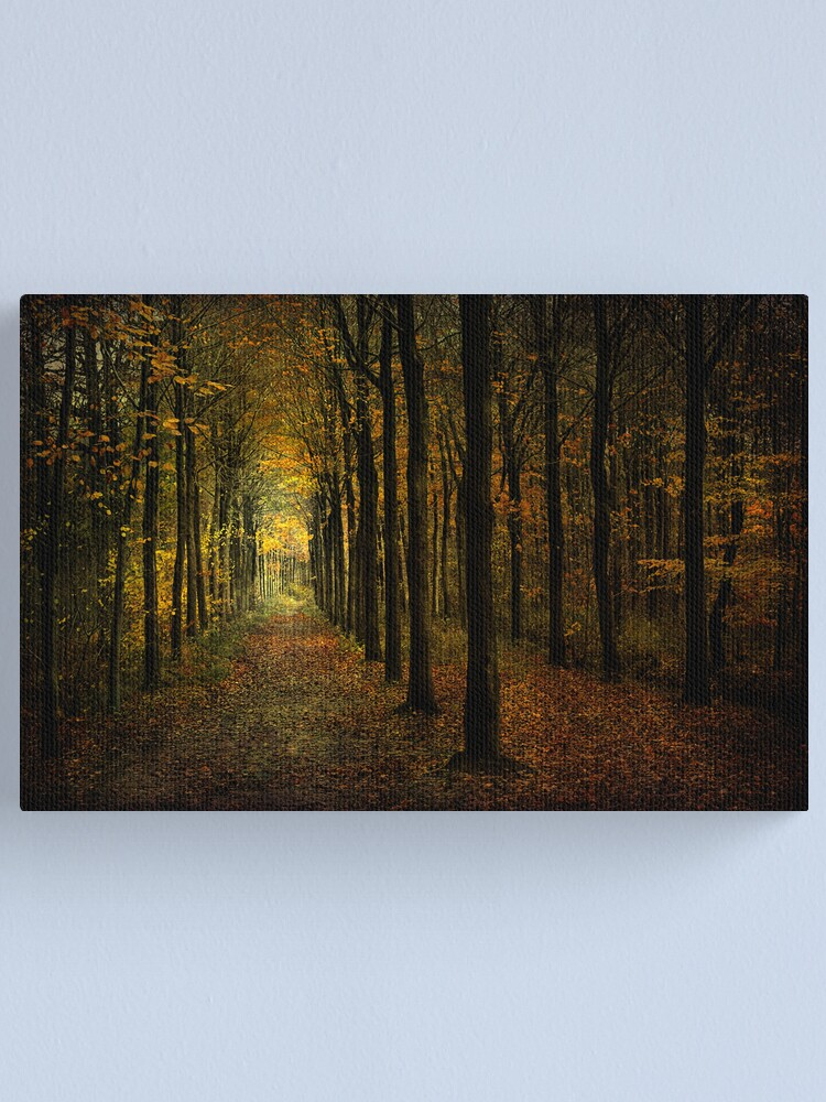 Alternate view of lots of trees Canvas Print