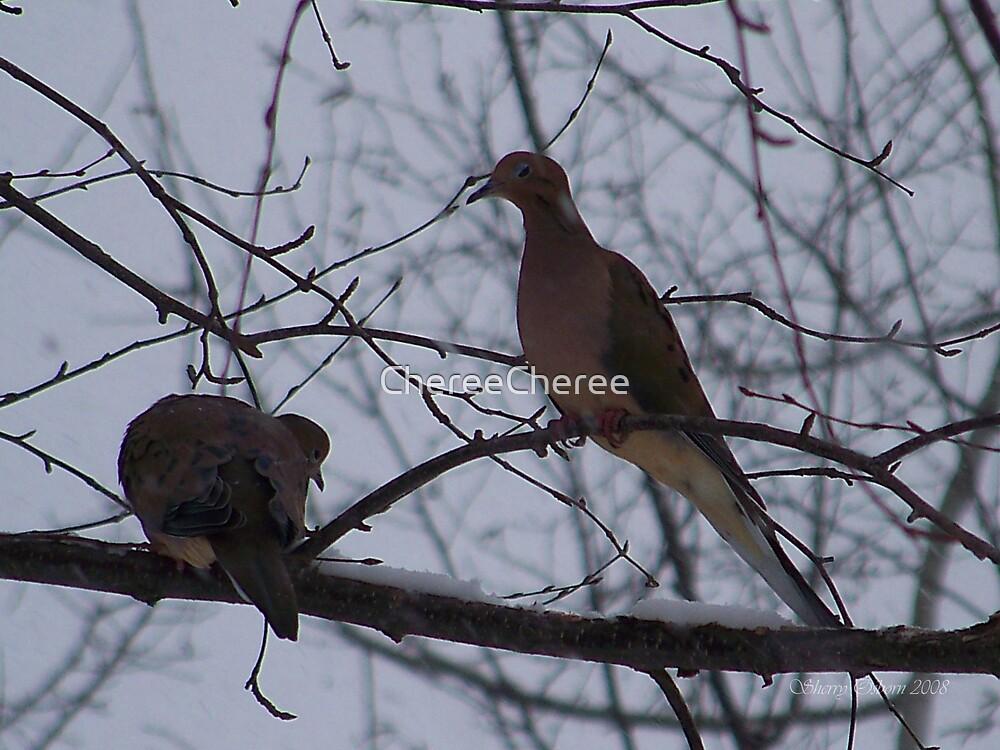 Doves by ChereeCheree