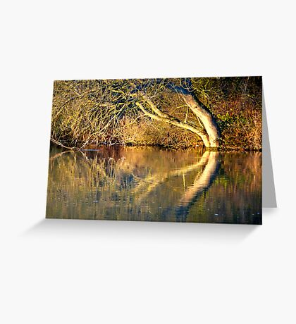 The river Thames at Pangbourne Greeting Card