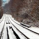 Winter Lines by Catherine Mardix