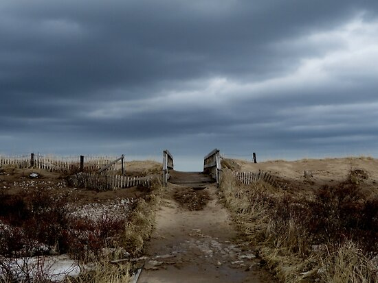 Melmerby Beach Boardwalk by Sartoris Art & Photography