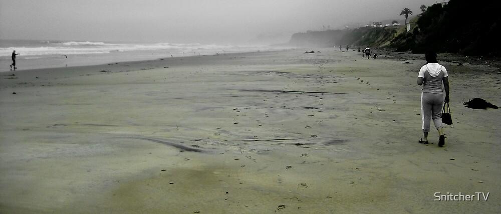 Cold Beach by SnitcherTV