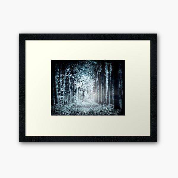 Night, Woods Framed Art Print