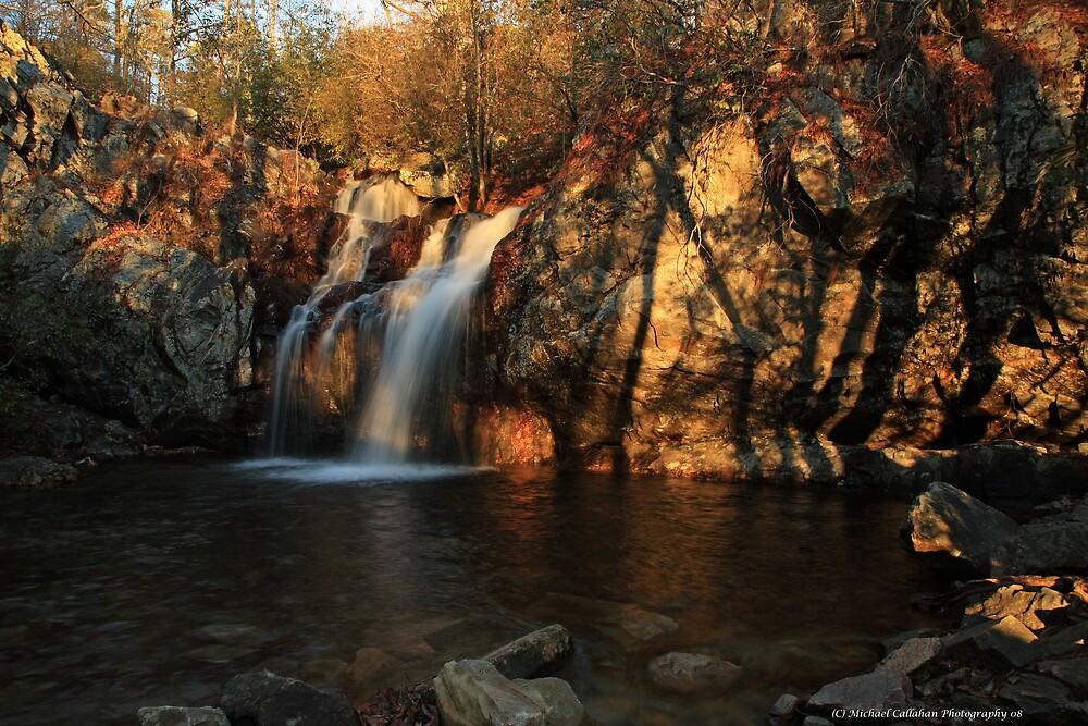 Shadow Falls  by Michael  Callahan