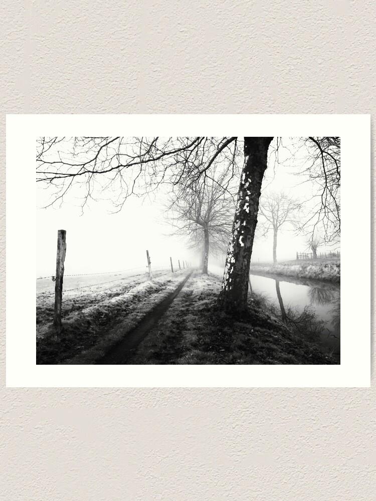 Alternate view of Misty trees Art Print
