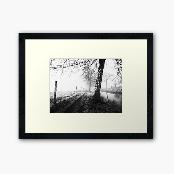 Misty trees Framed Art Print