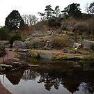 Botanical Garden, Gothenburg by 71featherst