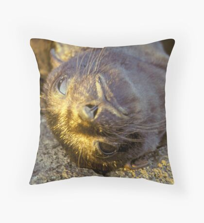 Galapagos Newborn Sea Lion Throw Pillow