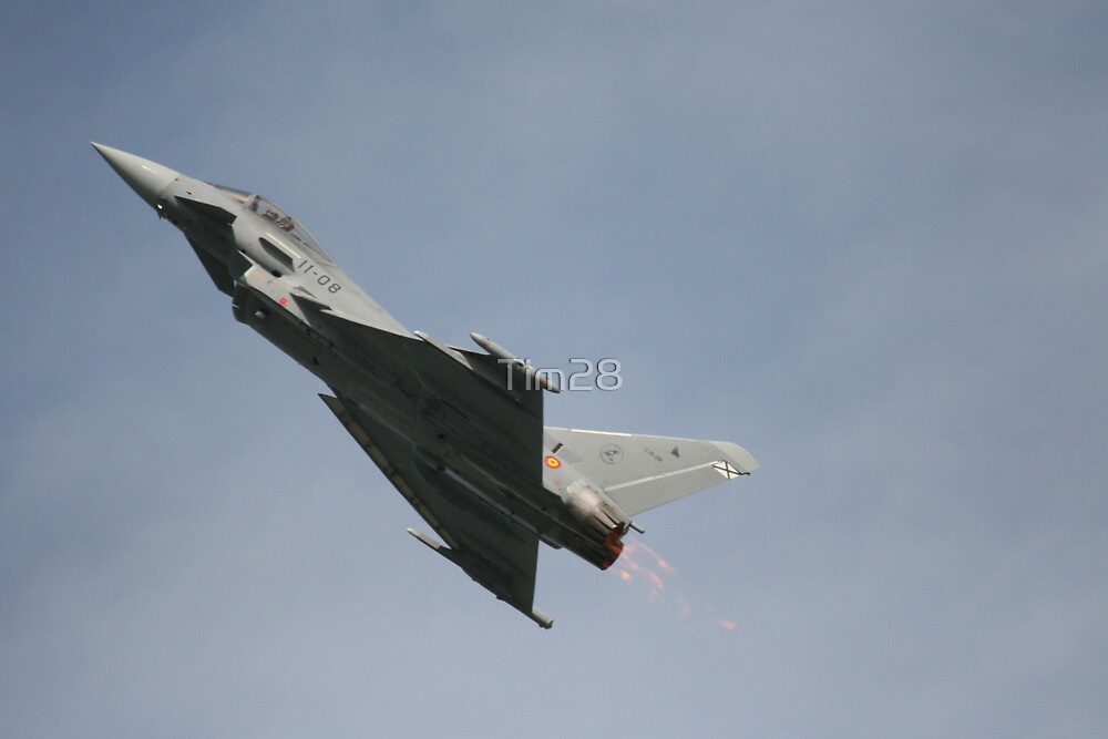 Eurofighter by Tim28