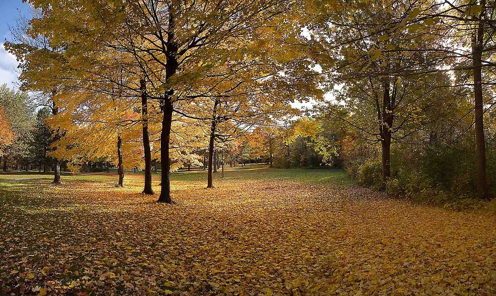 Fall panorama by Pierre L