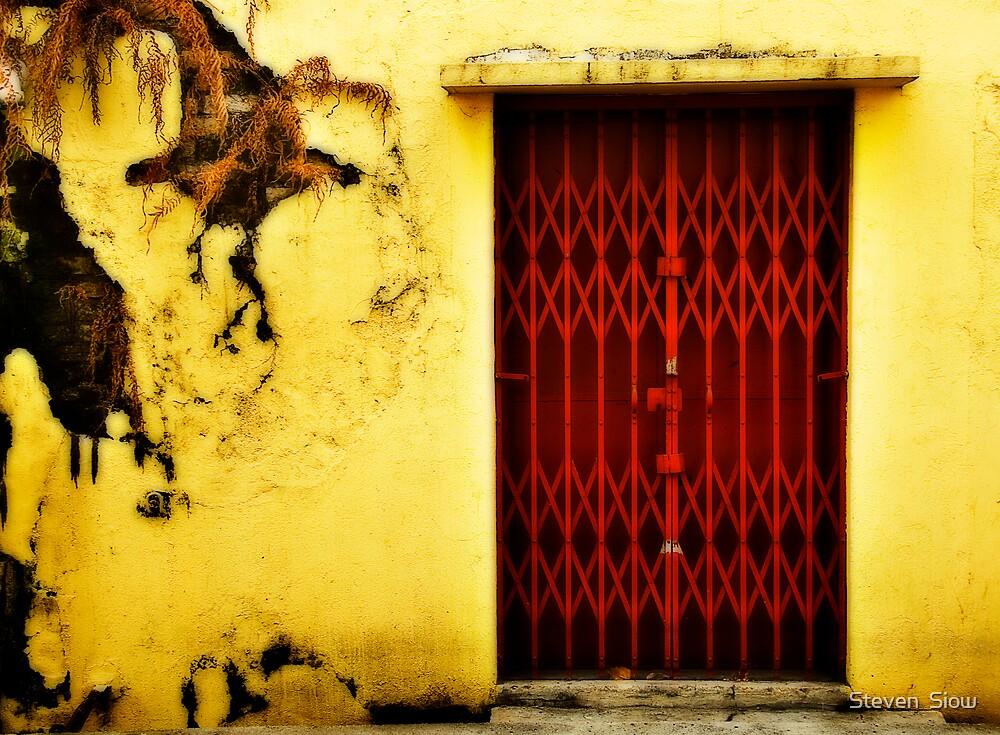 Red Door by Steven  Siow