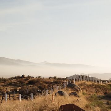 Valle de Guadalupe by evStyle