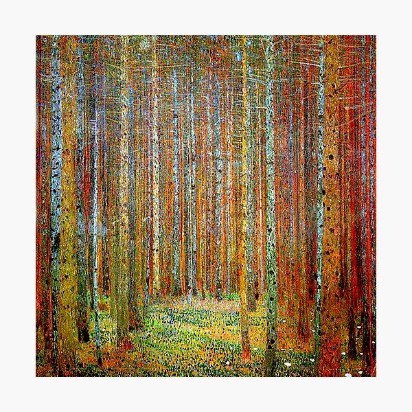 TANNEWALD: Gustav Klimt Landscape Painting Print Photographic Print