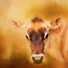 Jersey Cow Farm Art by Michelle Wrighton