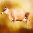 Jersey Cow in Field by Michelle Wrighton