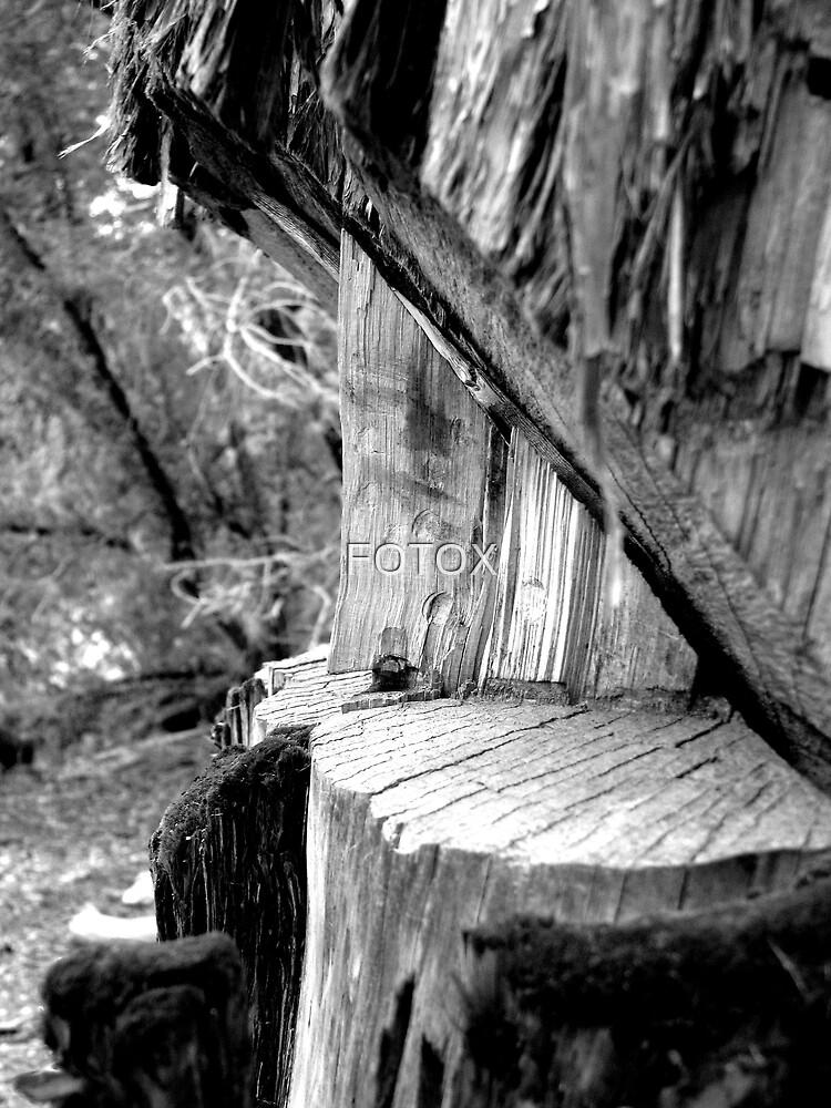 Destruction by FOTOX