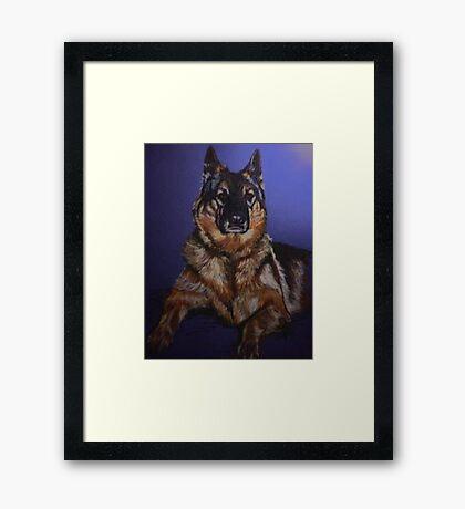 Nala~Portrait Of A German Shepard Framed Print