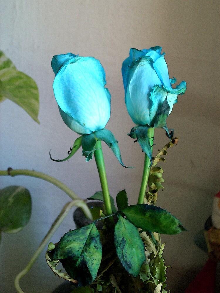 Flower.. by erika3987