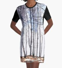 The colour of Winter is in the imagination Graphic T-Shirt Dress
