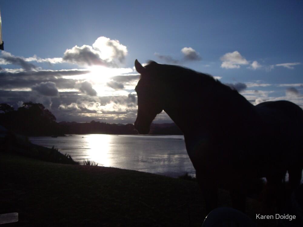 Admiring the sunset by Karen Doidge