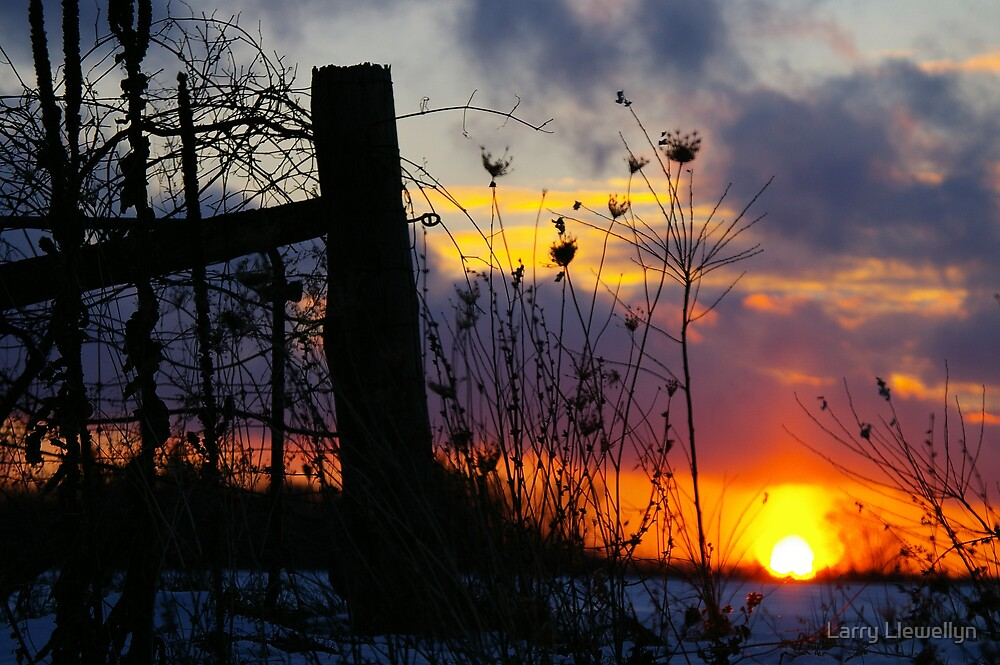 Heated Fence.... For Fence Lovers Everywhere.... by Larry Llewellyn