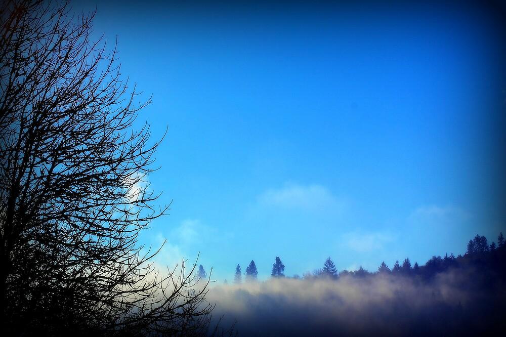 Blue Mountain Fog by Jessica Hardin