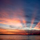 Fiji sunset from the beach by Alex Marks