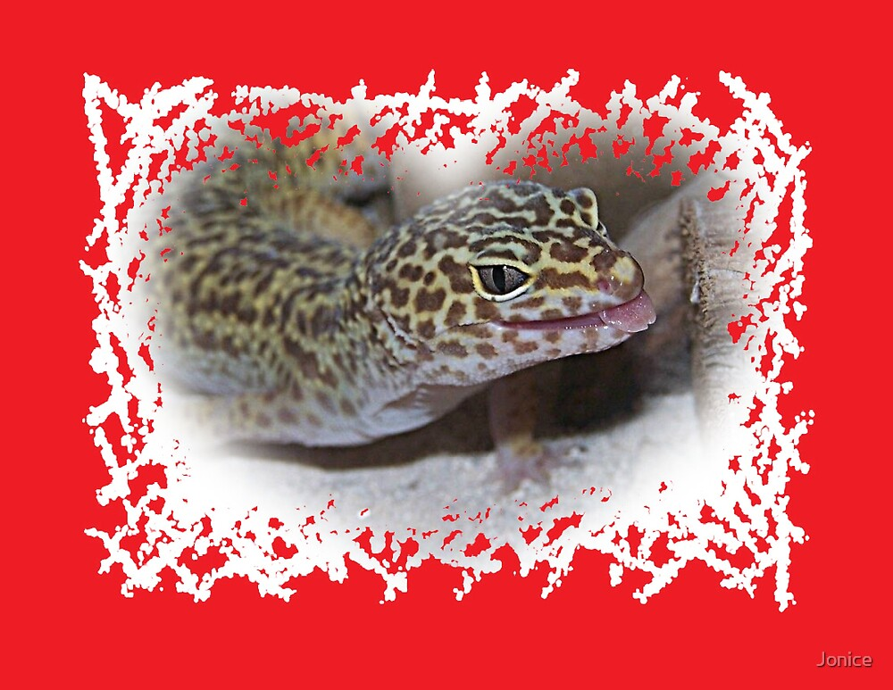 Leopard Gecko Lizard With Tongue Out by Jonice