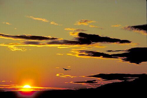 Tucumcari Dawn by blakbear97