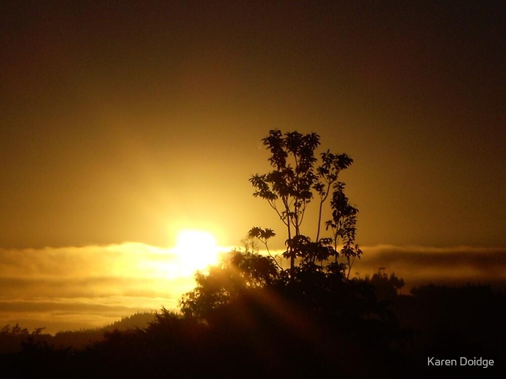 Sunrise in winter, Northland NZ by Karen Doidge