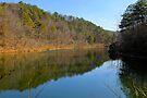 Black Bass Lake by NatureGreeting Cards ©ccwri