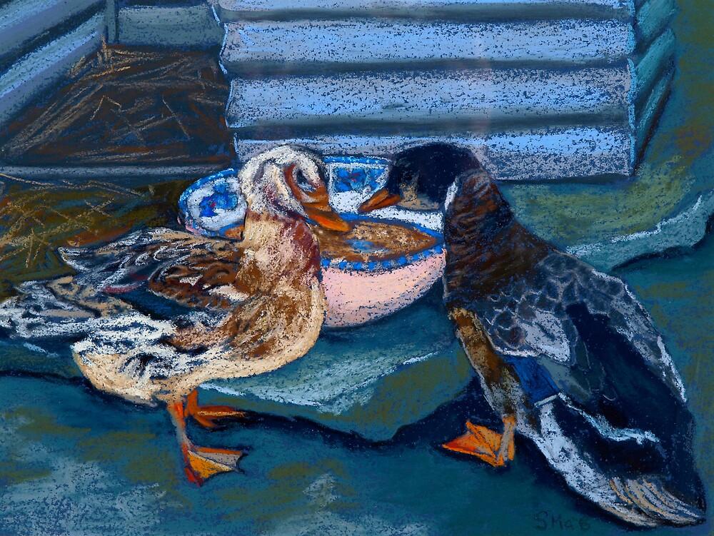 Appleyard Ducks by Susie a'Beckett