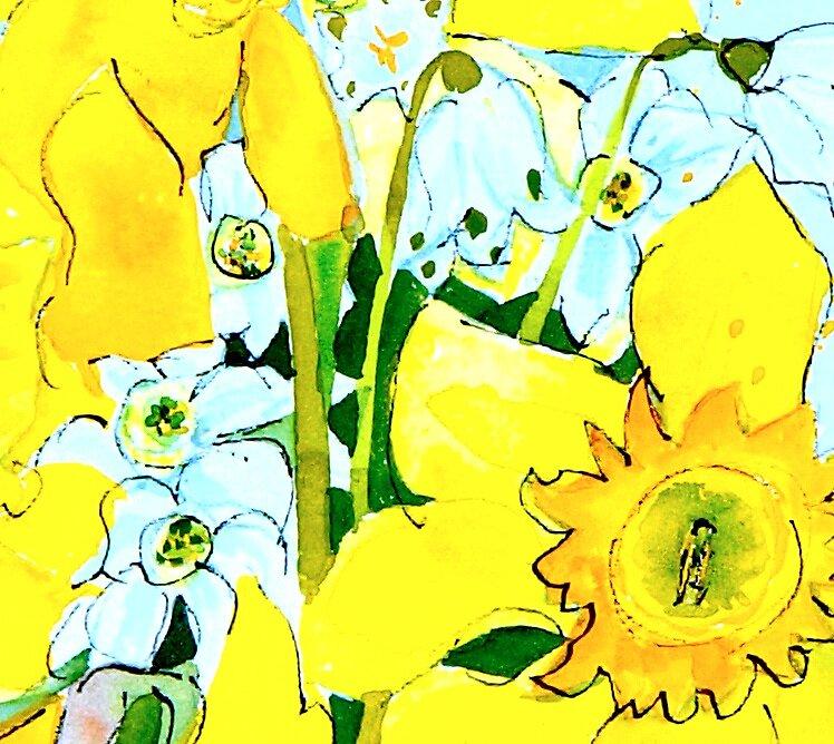Daffodils by Susie a'Beckett