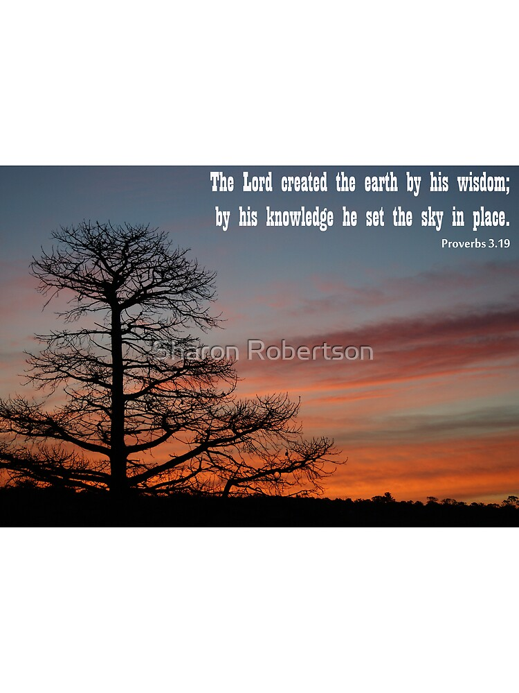 Proverbs 3.19 by Sharon Robertson