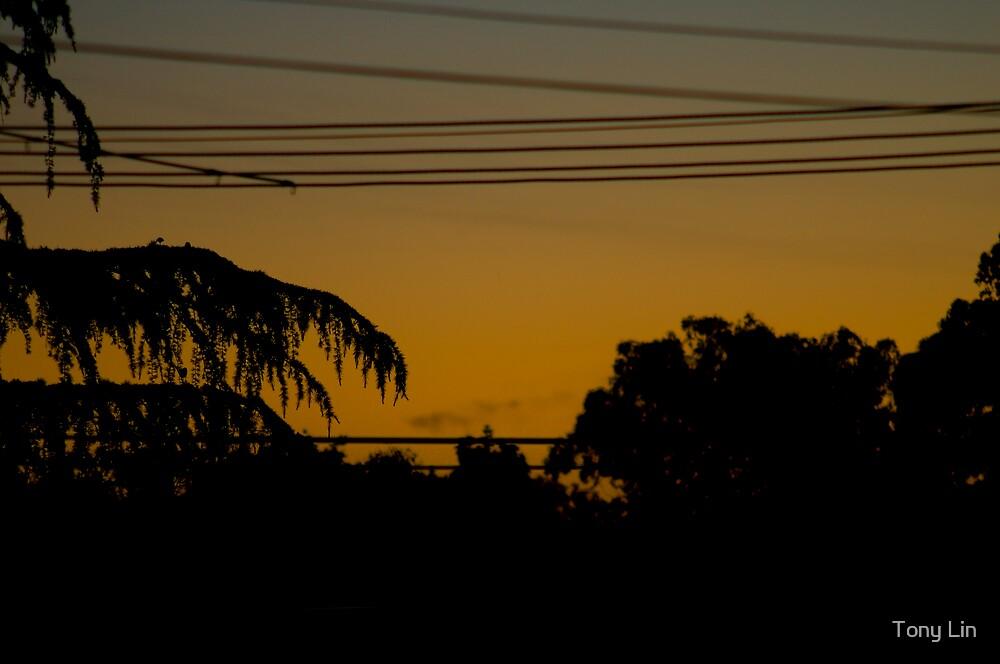 Urban Sky Sunset by Tony Lin
