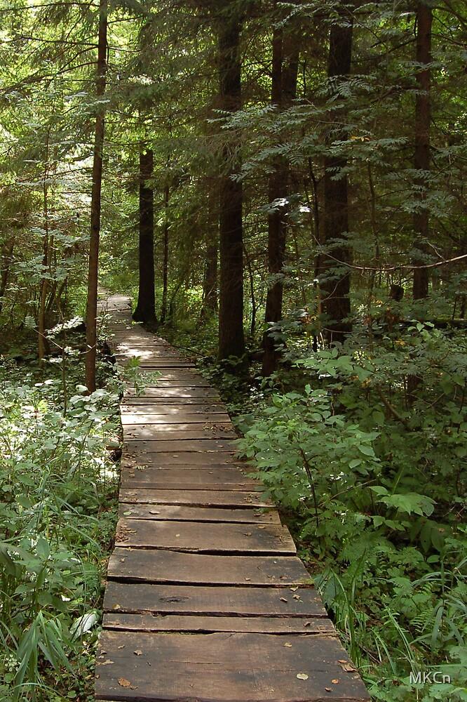 Forest way-bridge by MKCn