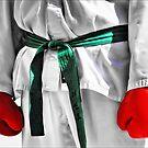 Taekwondo by Kurt  Tutschek