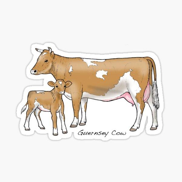 Guernsey Cow Sticker