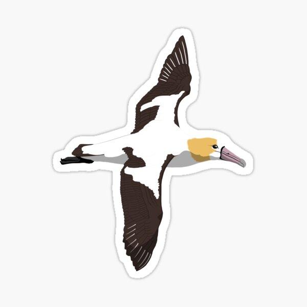 Short-tailed Albatross Sticker