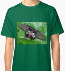 Butterfly at Buckfast Classic T-Shirt