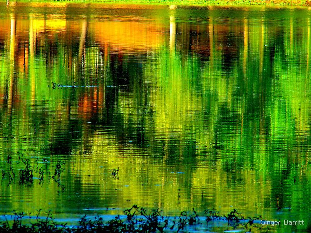 Green Reflection by Ginger  Barritt