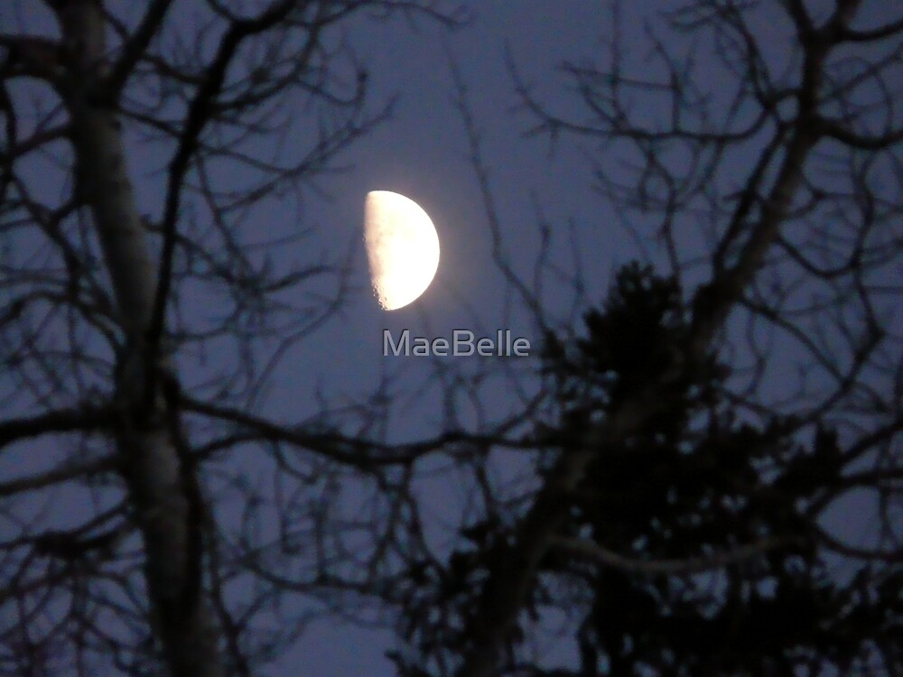 Dec, Moon by MaeBelle