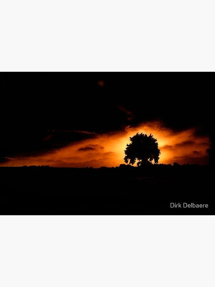 Tree, Darkness by Delbaere