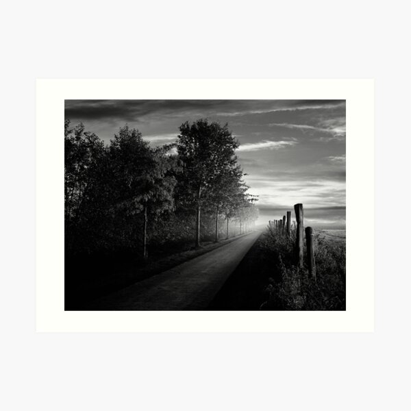 Path in the evening Art Print