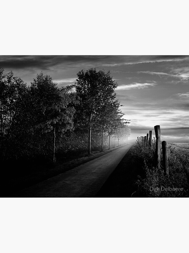 Path in the evening by Delbaere