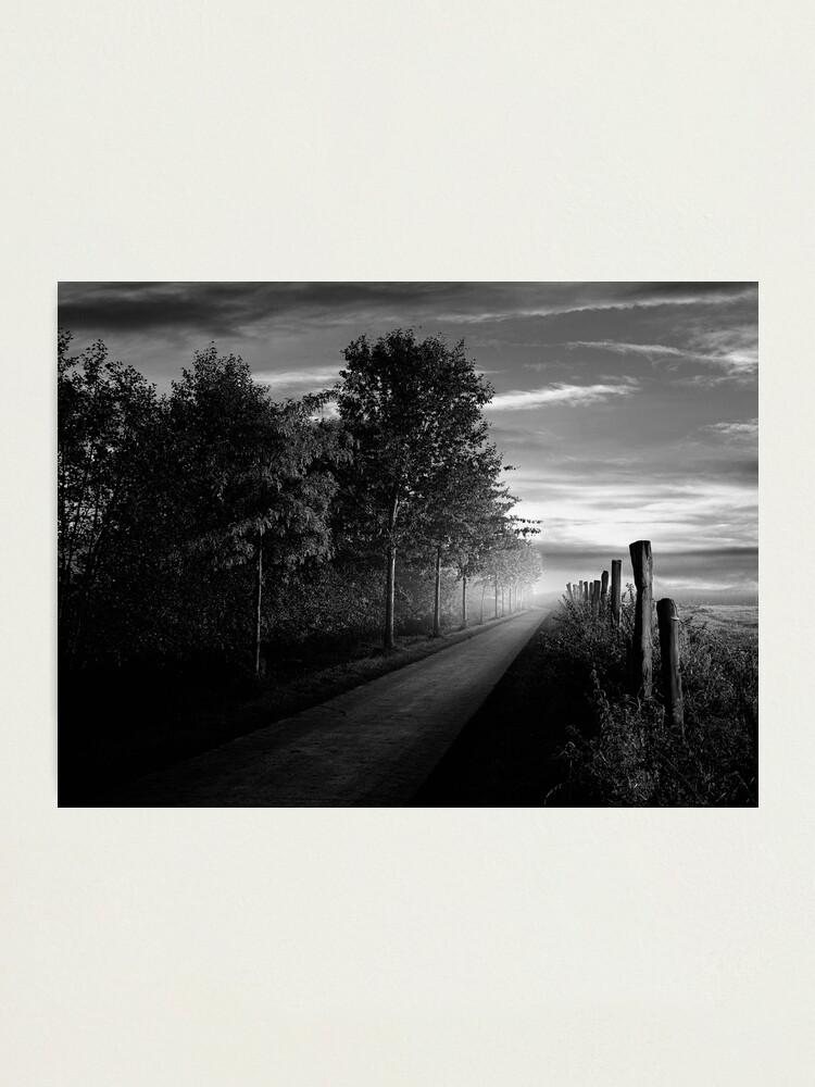 Alternate view of Path in the evening Photographic Print