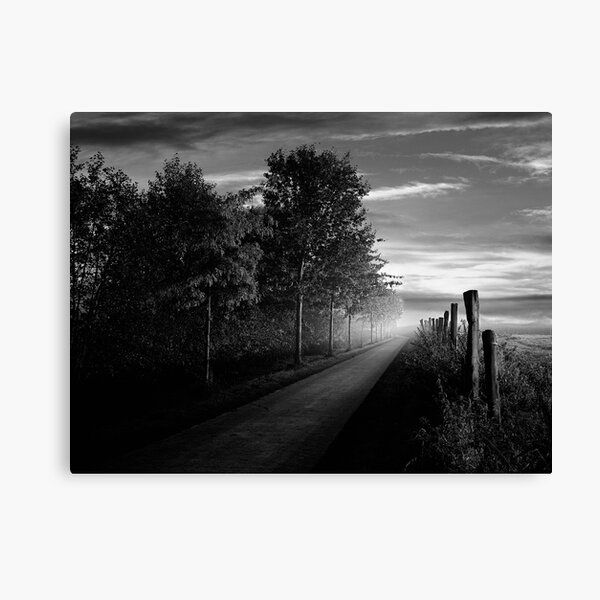 Path in the evening Canvas Print