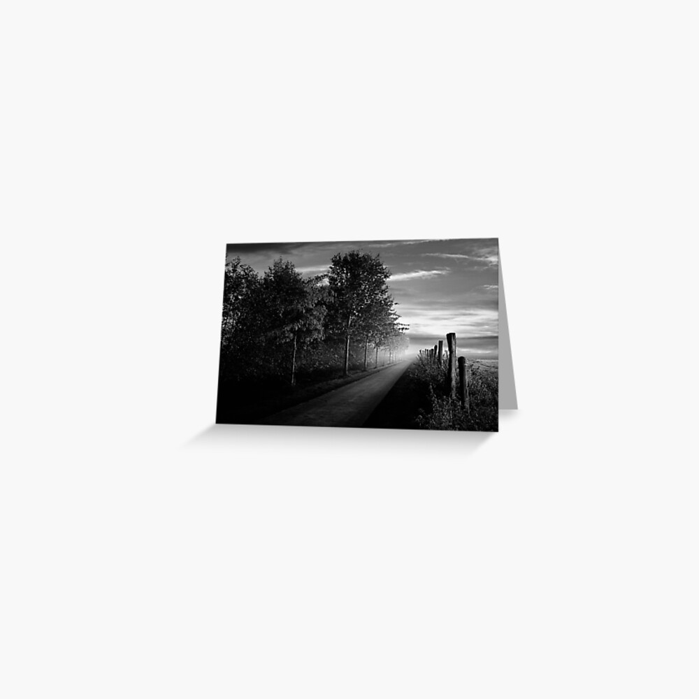 Path in the evening Greeting Card